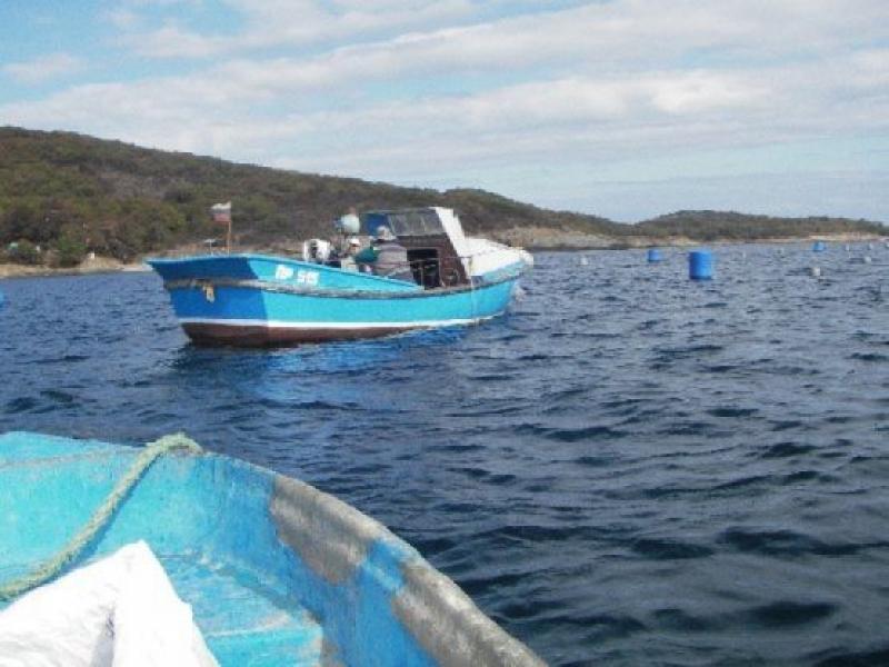 ИАРА-Бургас се среща с рибарско сдружение в кв. Крайморие