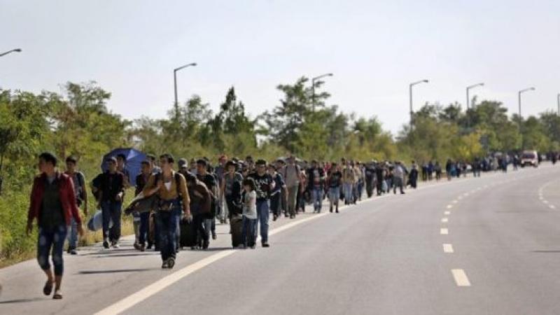 Власти Эдирне останавливают мигрантов на пути в Болгарию