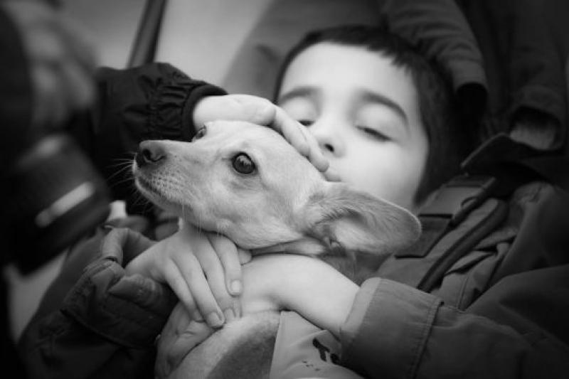Превръщат кучета от приют в терапевти на деца с увреждания