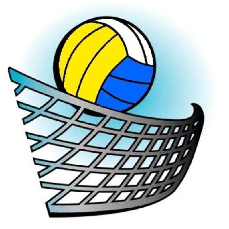 Талант от волейболния