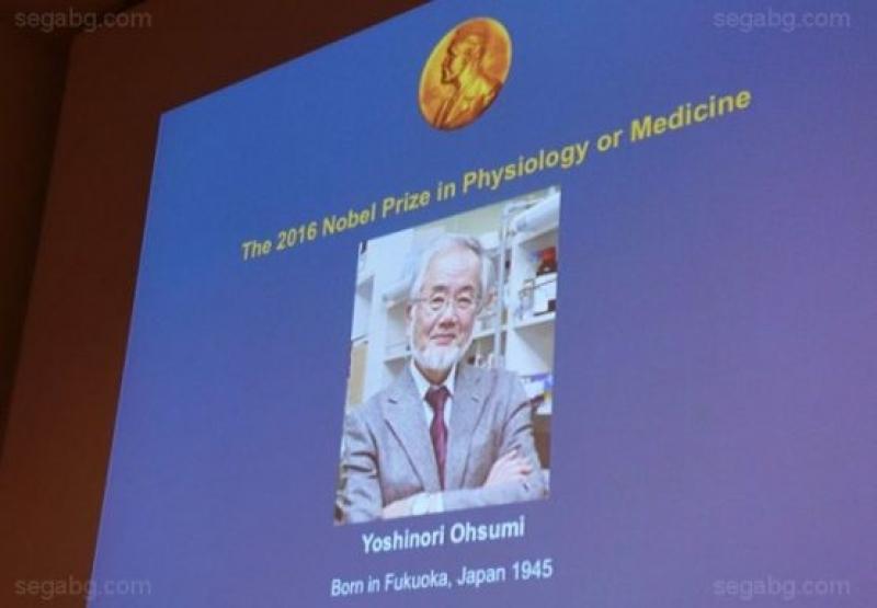 Учен от Токийския университет получи Нобела за медицина