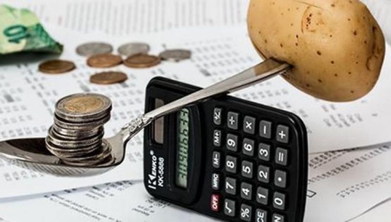 НСИ отчита по-висок общ доход средно на лице от домакинство