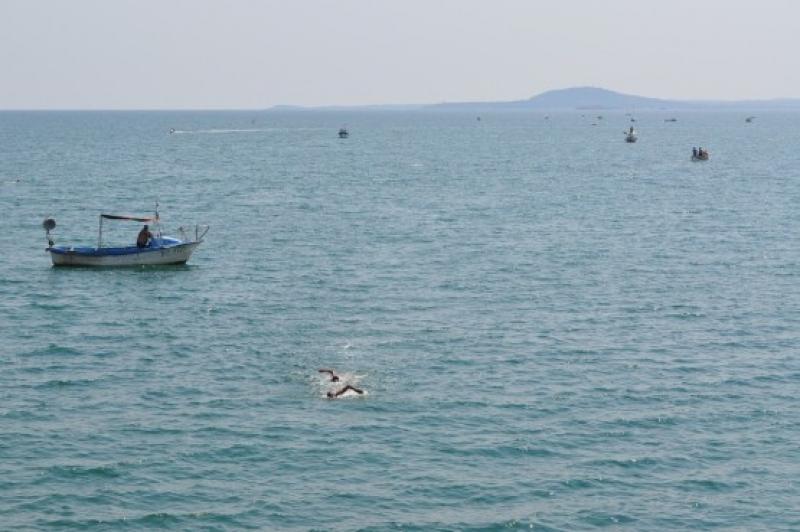 Традиционният плувен маратон от остров Света Анастасия ще е на 10 август