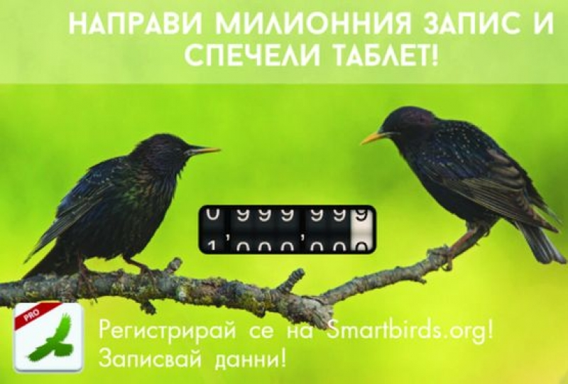 Милионният запис в SmartBirds Pro на БДЗП  печели таблет
