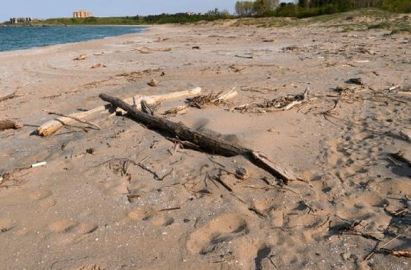 ВАС отмени наредбата, по която община Царево глобяваше къмпингуващите по плажовете