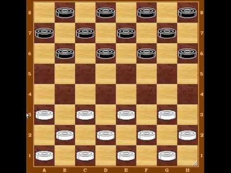 Състезатели по шашки от 34 държави се срещат в Свети Влас