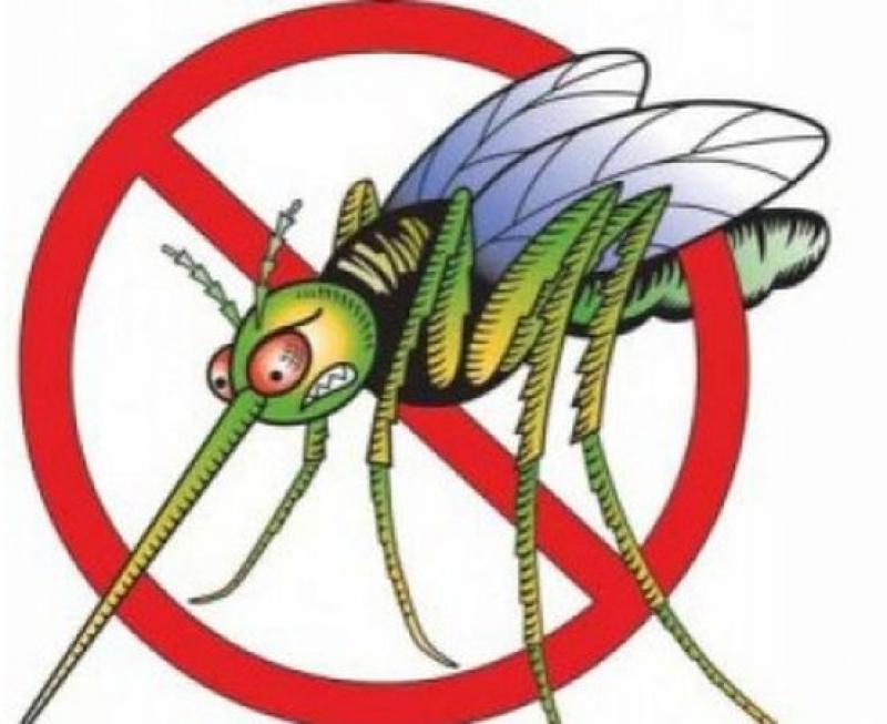 Пръскат комарите с мотоделтапланер